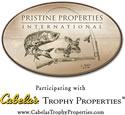 Pristine Properties International