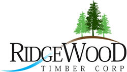 Derrick Spinks : Ridgewood Timber Corp