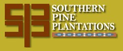 Eric Moody : Southern Pine Plantations