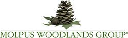 Robert Lyle @ The Molpus Woodlands Group, LLC