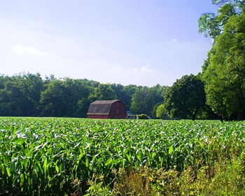Investing Strategically in Large Rural Land Tracts Can Lead to Maximizing ROI