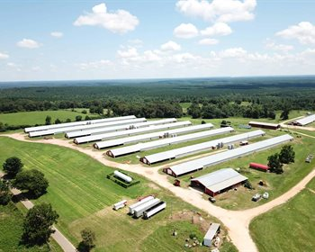 Profitable 11-House Poultry Farm on 71 Acres
