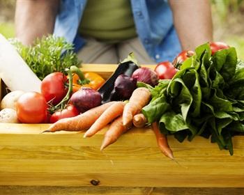 Suburban Farms – A Growing Trend