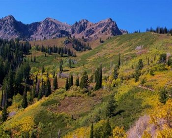 Wasatch Peaks Ranch: Pristine Recreational Property in the West
