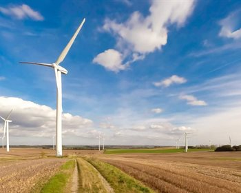 Wind Turbines on Farms Help Crops Grow, According to Science