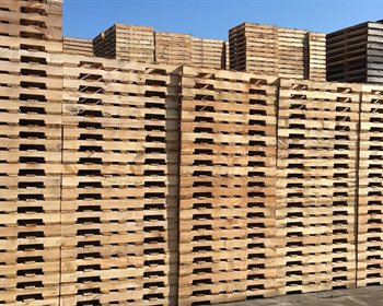 Wood Pallets and the Forest Industry