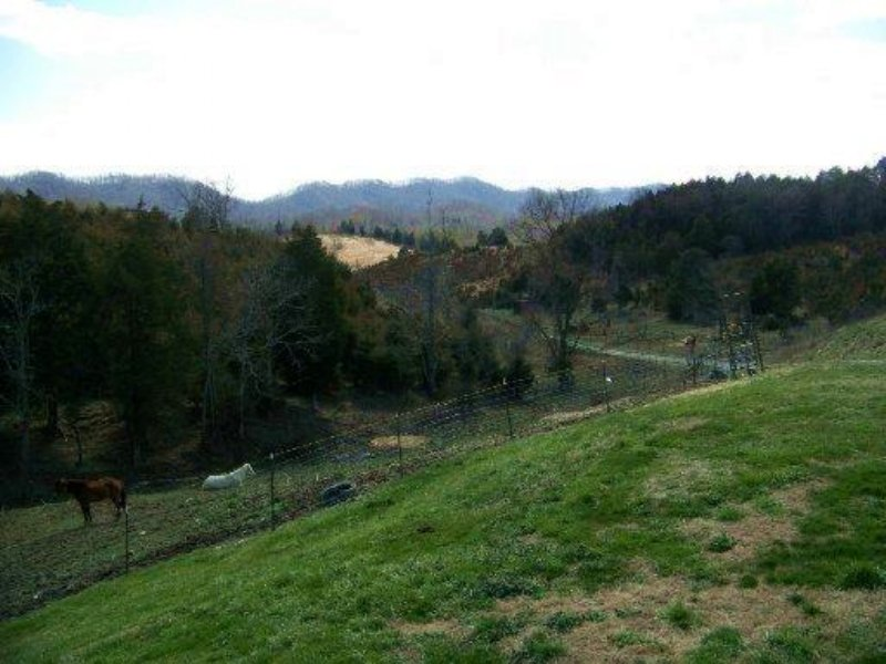 13 Acre Mini-farm : Rogersville : Hawkins County : Tennessee