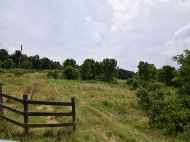 Land Bordered By Forest Preserve : Fifty Six : Stone County : Arkansas