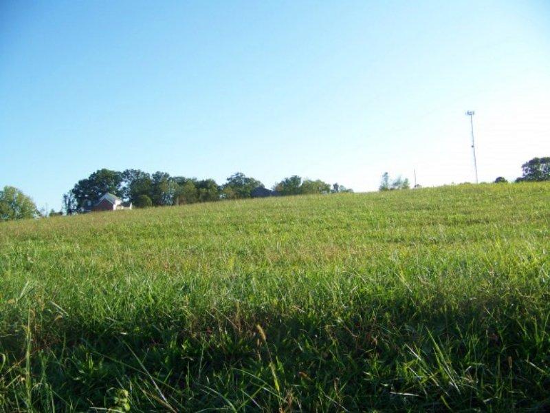 0.91 Acre Cleared Lot : Talbott : Hamblen County : Tennessee
