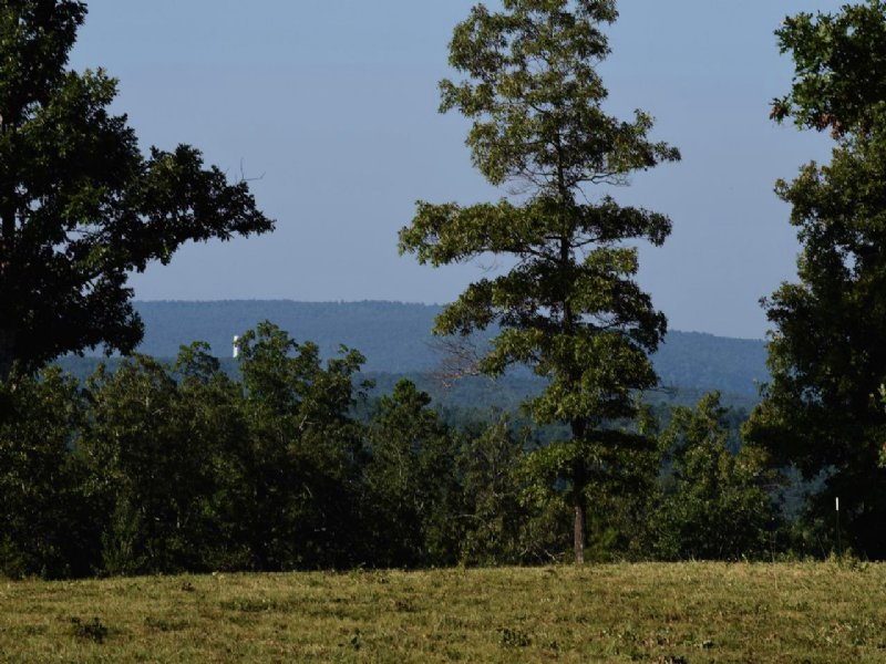Scenic Wrap-around View : Mountain View : Stone County : Arkansas