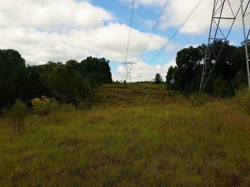 Spivey Mill Creek : Headland : Henry County : Alabama