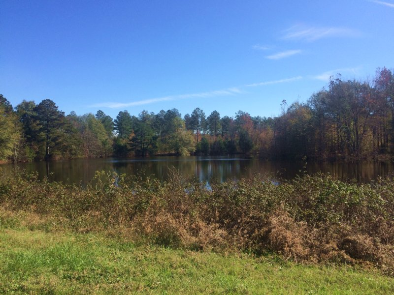 Hopewell Church Road Farm W/ Home : Clinton : Laurens County : South Carolina