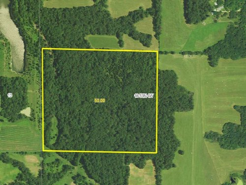 50 Acres : Curryville : Pike County : Missouri
