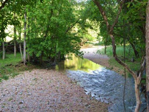 664 Acres +/- Prime Cattle Farm : Marshall : Searcy County : Arkansas