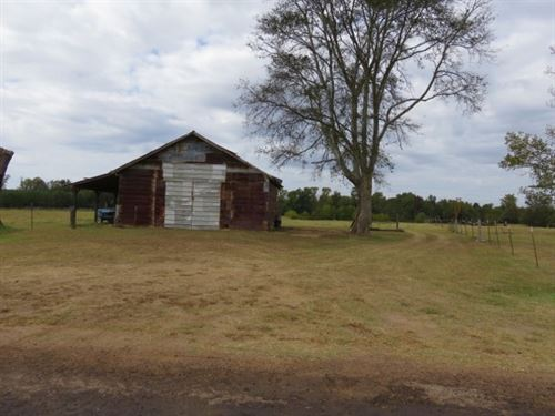 21.5 Ac - Pasture, Pond With Nice : Elysian Fields : Harrison County : Texas
