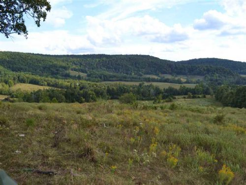 324 Acres +/- Hunting And Farmland : Marshall : Searcy County : Arkansas