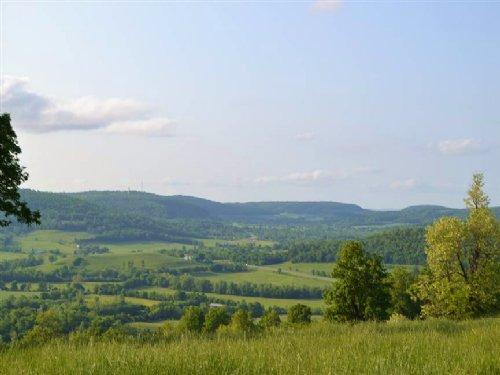 210 Acres +/- Farm Land And House : Marshall : Searcy County : Arkansas