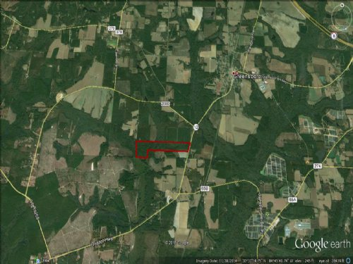 93 Acre Hunting And Timber Tract : Greensboro : Gadsden County : Florida