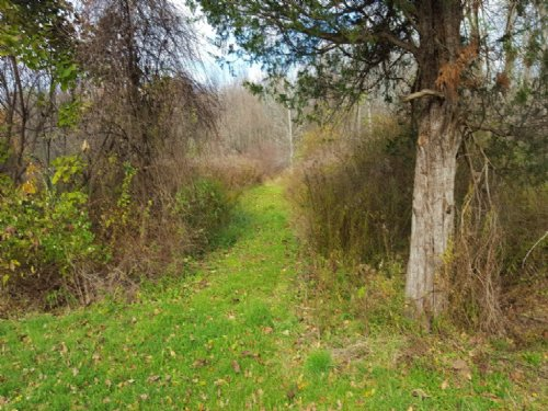 Building Lot Near Lake Ontario 8 Ac : Sterling : Cayuga County : New York