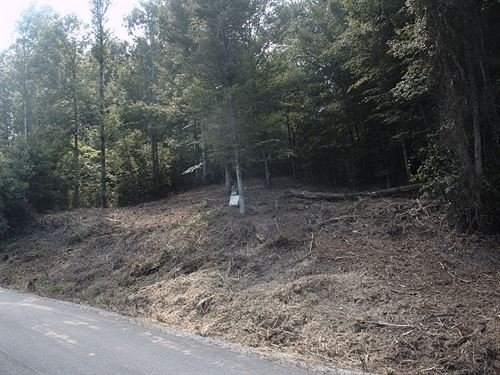 1.32 Acre Building Lot Norris Lake : New Tazewell : Claiborne County : Tennessee