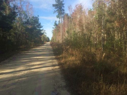 44.7 Acres : Moncks Corner : Berkeley County : South Carolina