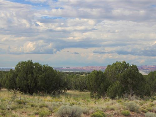 40 Acre Hilltop Wilderness Ranch : St. Johns : Apache County : Arizona