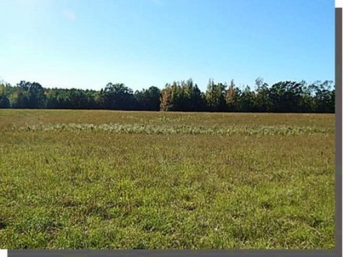 200 Acres In Attala County : Ethel : Attala County : Mississippi