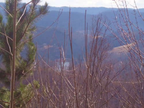Lake View Lot In Lone Mtn Shores : New Tazewell : Claiborne County : Tennessee