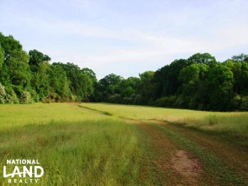 Martin Creek Tracts : Moundville : Hale County : Alabama