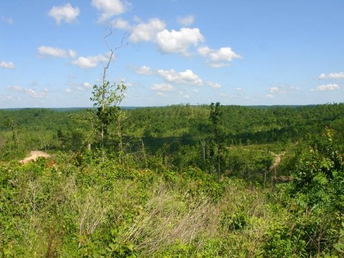 20.86 Acres Antler Ridge. Terms $24 : Summerville : Shannon County : Missouri