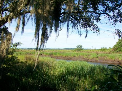 Coastal Deep Waterfront Lot : Midway : Liberty County : Georgia