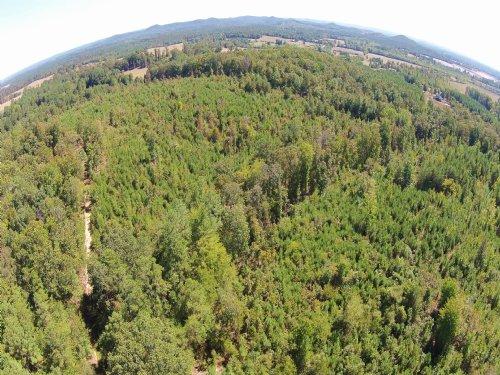 52.28 Acres Brumbelow Road : Aragon : Floyd County : Georgia