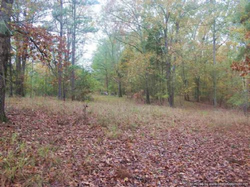 3.3 Acres In Lorman Community : Madison : Mississippi