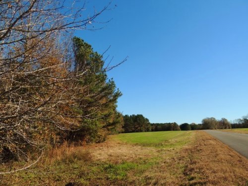 67.8 Ac Robert Williams Rd. : Pine Mountain : Meriwether County : Georgia
