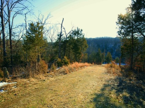 54.56 Acres : Portland : Callaway County : Missouri