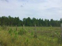 Cobb Creek Parcel 5 : Sanderson : Baker County : Florida