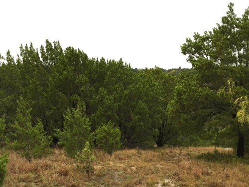 Scenic Lake Lot Near Lake Granbury : Granbury : Hood County : Texas