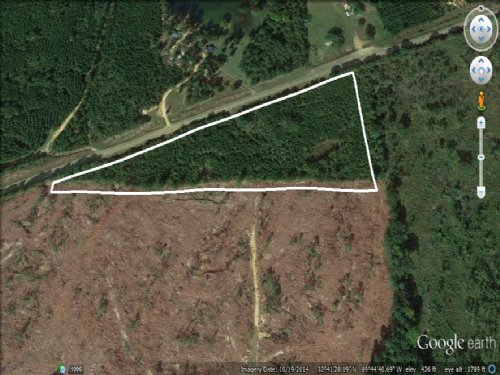 8.9 Acres For A Great Home Site : Camden : Madison County : Mississippi