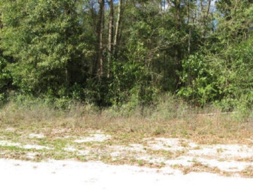 1 Acre Lot 771139 : Old Town : Dixie County : Florida