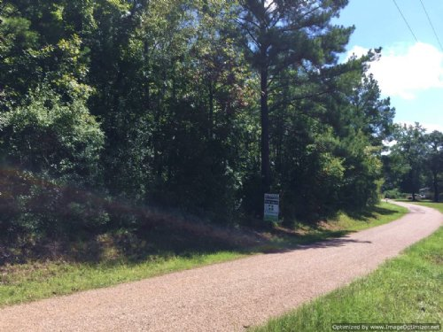 37 Acres Of Great Hunting Land : Georgetown : Copiah County : Mississippi