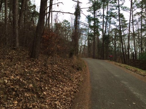 Wooded Foreclosure Lot : South Pittsburg : Marion County : Tennessee