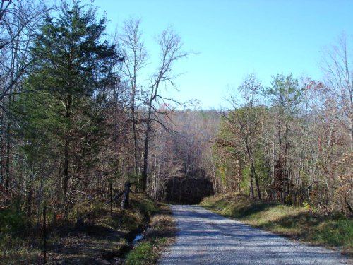 Foothills Of The Smokie Mountains : Tellico Plains : Monroe County : Tennessee