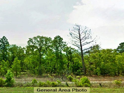 0.35 Acre Lot In Keystone Heights : Keystone Heights : Clay County : Florida