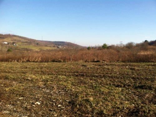 Farmland Building Pond 135 Acres : Cuba : Allegany County : New York