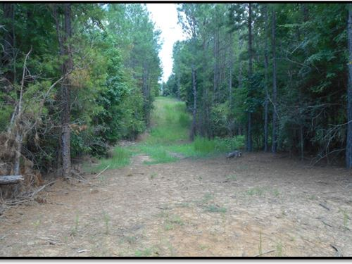 103.5 Acres In Lafayette County : Oxford : Lafayette County : Mississippi