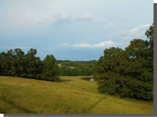 154 Acres In Lafayette : Oxford : Lafayette County : Mississippi