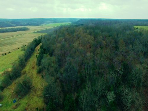 43.81 Acres : Frankford : Pike County : Missouri