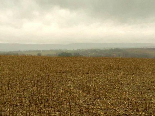 28 Acres Of Prime Land In Columbia : Berwick : Columbia County : Pennsylvania