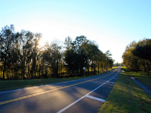 Beautiful 305 Acre Farm For Sale : Jasper : Hamilton County : Florida