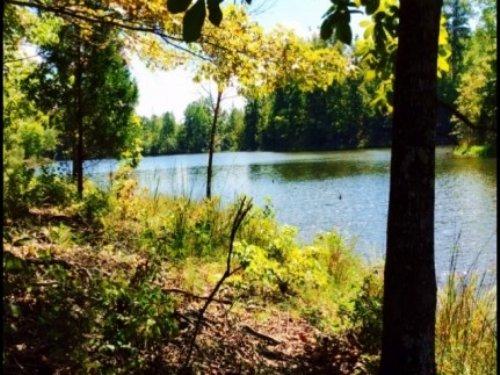 164.5 Acres In Kemper County : De Kalb : Kemper County : Mississippi